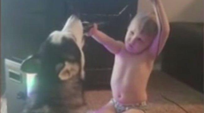 A világ legcukibb párosa: így duettezik egy kisfiú és a kutyája – videó