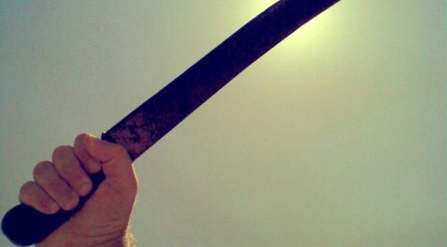 Bozótvágó ellen cirokseprűvel mentette életét Arlón