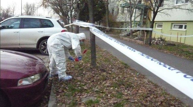 Már a héten elítélhetik a Szatymazi utcai gyilkost