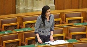 A Fidesz az adatvédelmi hatósághoz fordul Demeter Márta ügyében