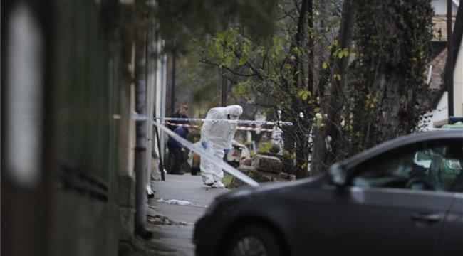 Békásmegyeri gyilkosság: bódult állapotban fogták el a tettest