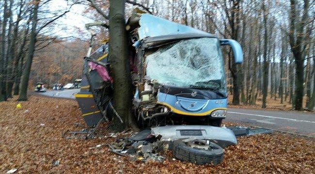 Szakadék helyett hajtott fának a fékhibás busz sofőrje