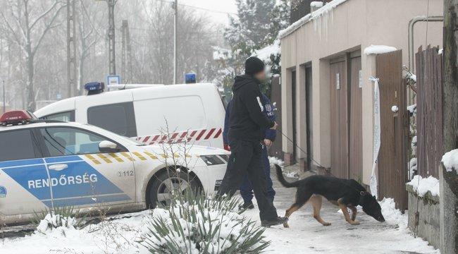 A pszichiátrián rendelhetik el az anyját lemészároló csepeli férfi letartóztatását