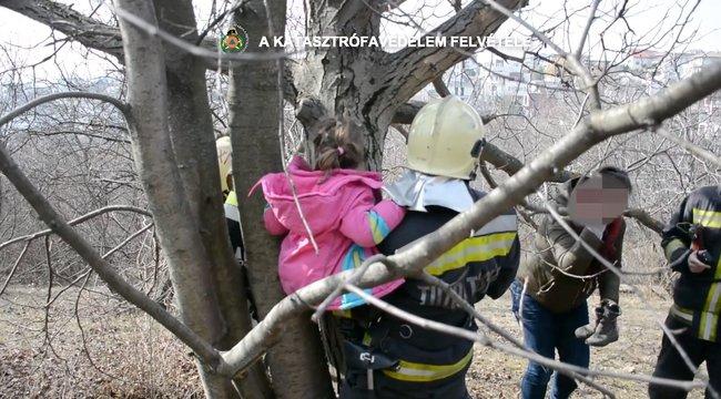 Elképesztő felvétel - fatörzsbe szorult kislányt mentettek ki a budapesti tűzoltók