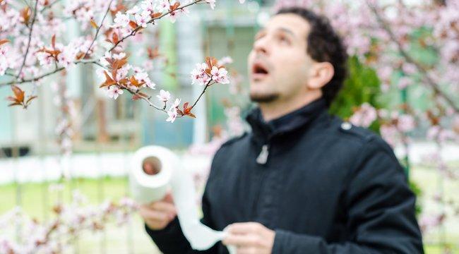 Most mégmegfékezhetjük a súlyos allergiát