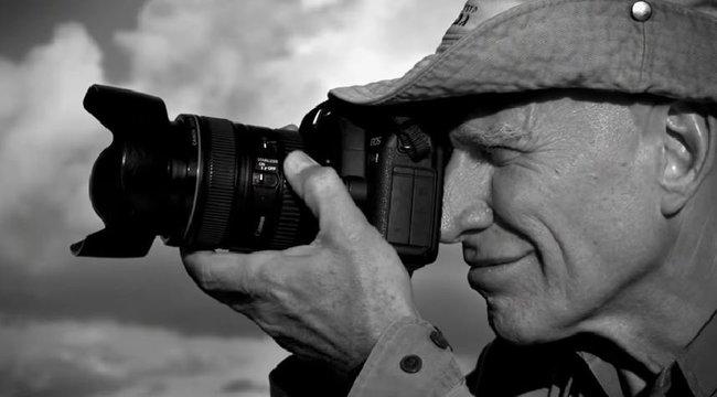 Két évtized alatt újratelepített egy erdőt a híres fotós és a felesége