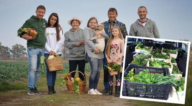 Házhoz jött a virtuális gazdák első adag zöldsége
