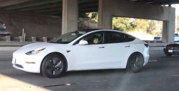 Sokkoló látvány: ez a sofőr egyszerűen elaludt a volán mögött vezetés közben - videó