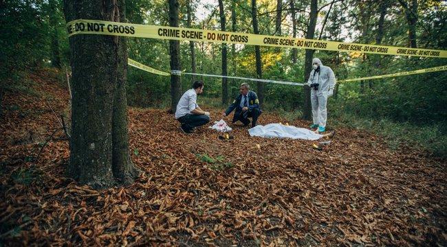Retró krimi –Rejtély, ki ölte meg a vértesszőlősi párt
