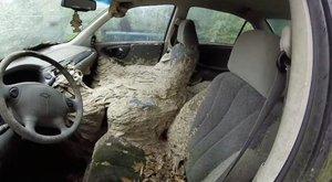 Vérfagyasztó! Milliónyi darázs fészkelte be magát egy autóba