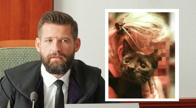 Állatkínzás Soroksáron: 12 órát szenvedtek a föld alatt a cicák