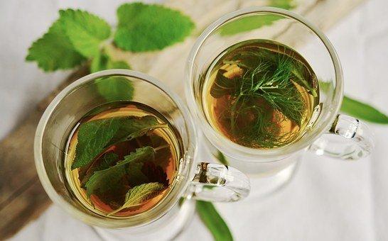 Őszi gyógynövénytár: csillapítja a lázat a hársfa- és a bodzatea
