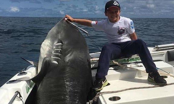 Hárommázsás cápát fogott nyolcévesen
