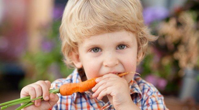 TOP7 furcsa tény élelmiszerekről - lila répa, mogyoró-dinamit és a nagy fehér-csoki átverés