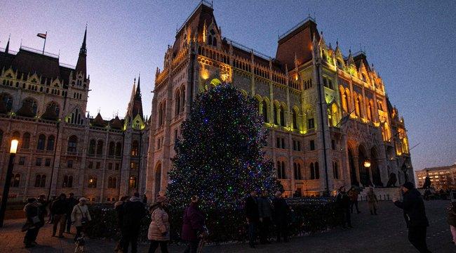Beragyogja Budapestet az ország karácsonyfája