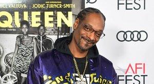 Erre sem számítottunk: altatódalokkal teli Snoop Dogg lemez jelent meg