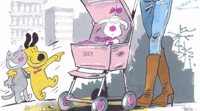 Itt az új divat: Babakocsi váltja kia kutyahordozót