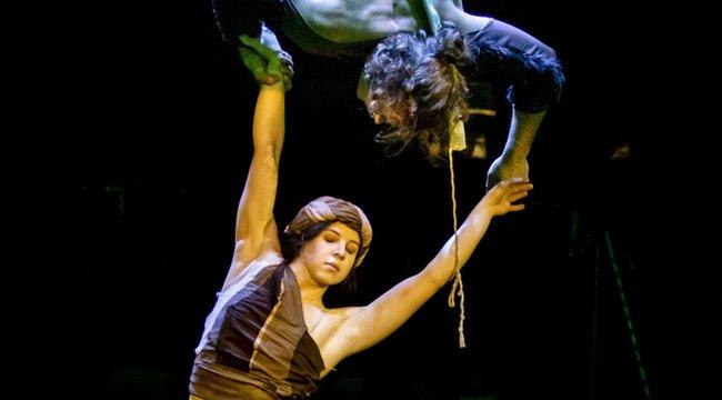 A cirkuszbankeltik életreA dzsungel könyvét