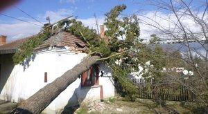 Pusztító ciklon –Kitombolta magát Ciara