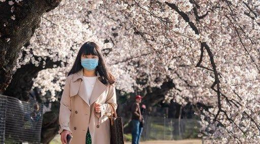 20.000 dollárért, fullos magángépekkel repülnek haza a kínai diákok a koronavírus terjedése miatt az Egyesült Államokból