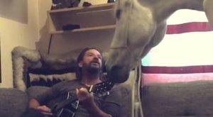 Pintér Tibor saját kanapéján ülve énekelt lovának