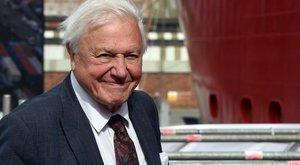 David Attenborough:Ha megsértjük a természetet, magunkat sértjük meg