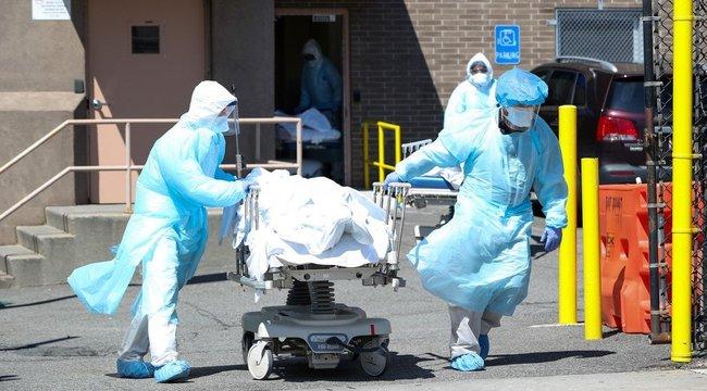 Holttestekkel is terjed az új típusú koronavírus?