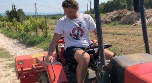 Szállodái üresek, borából él Hajdu Attila