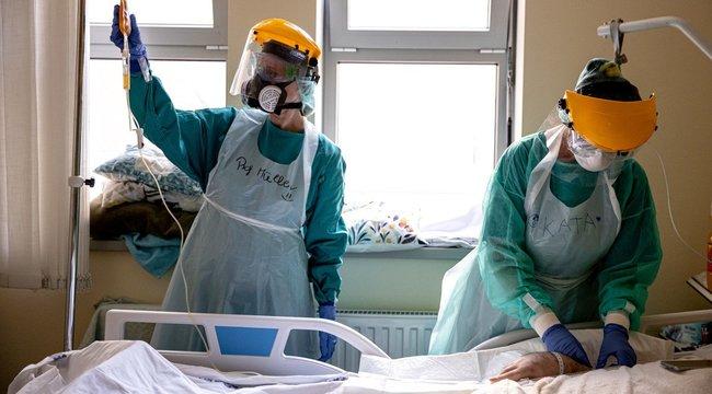 Két beteg kapott vérplazma-készítményt a Semmelweis Egyetemen