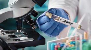 Harc a koronavírus ellen: Magyar kutató ad reményt a világnak