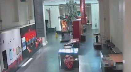 Betört múzeumba a fiatal, csak hogy dinoszaurusszal szelfizhessen – videó