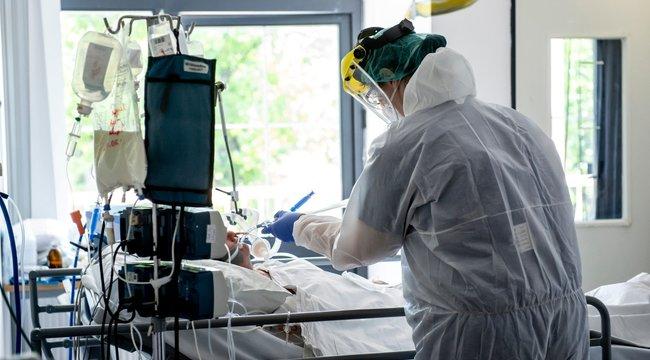 Legyőzte a koronavírust: Csodás terápiával gyógyult meg az első magyar vérplazmás