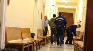 Kiskorú féltestvérét is megerőszakolta a macsétás kőbányai gyilkos