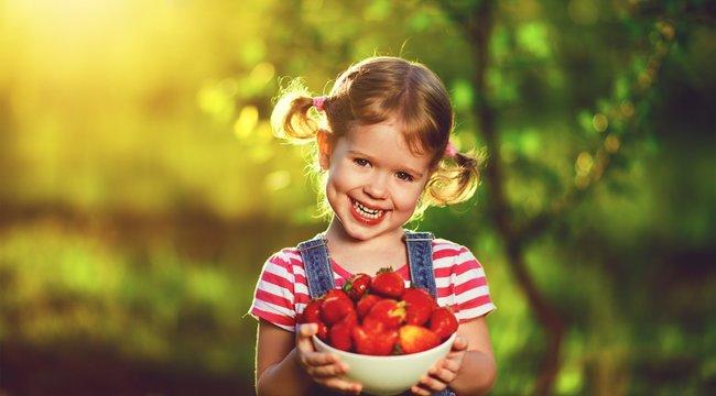 Dinnyét Cecéről, epret Csökölyről - nem mindegy, honnan származik a gyümölcs, amit megvesz