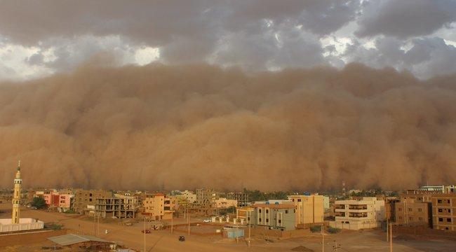 Aggasztó: ilyen hatással van a tüdőre a mindent beterítő sivatagi por