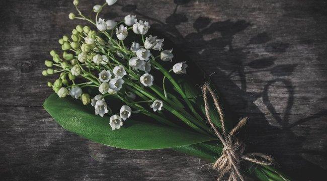 Randi 4 gyöngyvirágóra, 3 akáclevél múlva: így üzentek egymásnak a szerelmesek