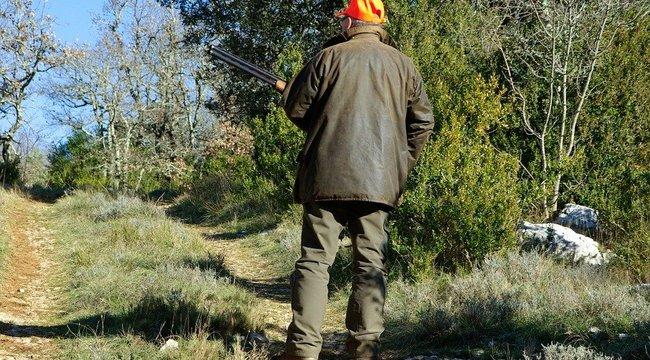 Súlyos vadászbaleset Nagybörzsönyben: fejbelőtték a helyi erdészt,válságos állapotban van