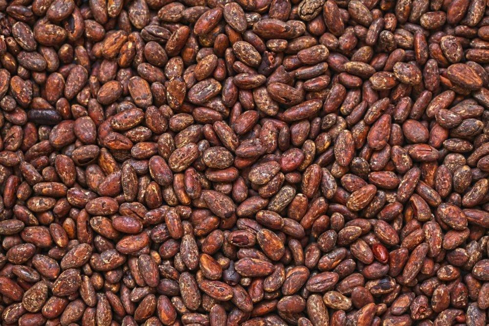 Partidrogként is használható a csokoládé, az aztékok vérrel kevert kakaóval kábítottak