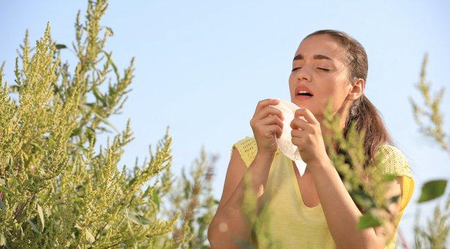 Most kell elkezdeni szedni az allergiagyógyszert