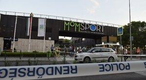 Halálos tűz a MOM Parknál : Pokolian hiányzik - anyja otthon őrzi a kis Zselyke hamvait