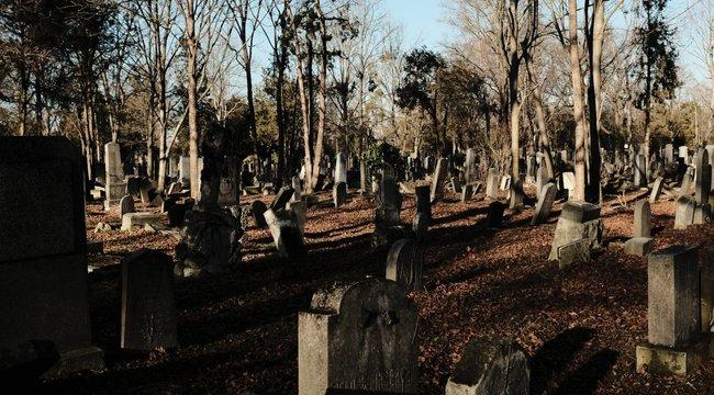 Megrongálták a csupán egy órát élt kisbaba sírhelyét - sokkolta a látvány a gyászoló anyát