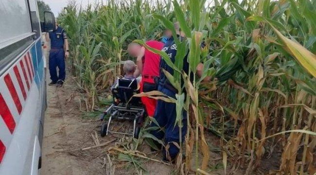 A kukoricásból került elő a harkányi fürdőből elkóborolt idős férfi