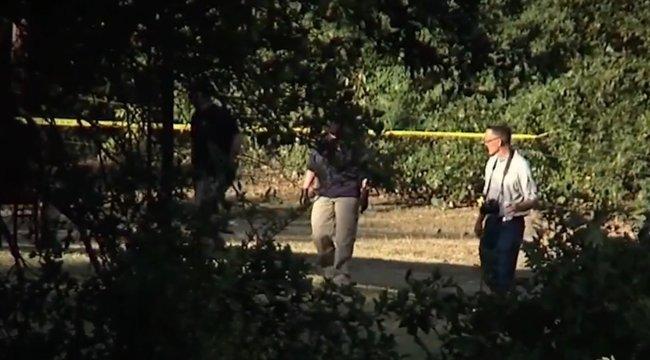 Az erdő szélére hajították a halálra égett ötéves lány holttestét – az apját azonnal lecsukták- videó