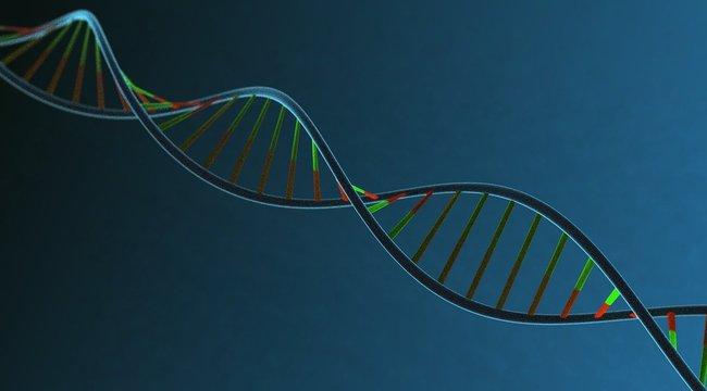 DNS tesztekkel sem tudták azonosítani a zsákokban folyóba dobott emberi maradványokat