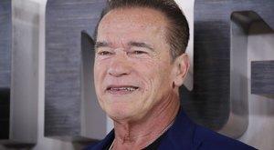 Tévés kémsorozat főszereplője lesz Schwarzenegger