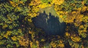Fura fényjelenségek miatt lett turistaparadicsom az erdélyi erdő