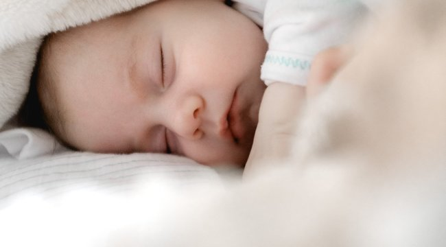Tényleg a gólya hozza: Gyermekáldást jelent, ha gagóval álmodik