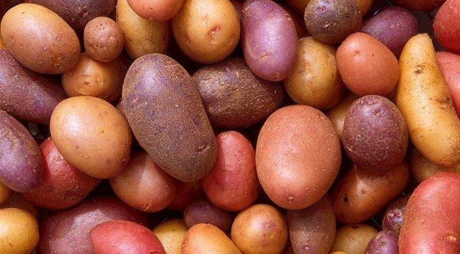 Unja a sült krumplit meg a pürét? Ezeket a burgonyás köreteket ötből négy ember nem ismeri!