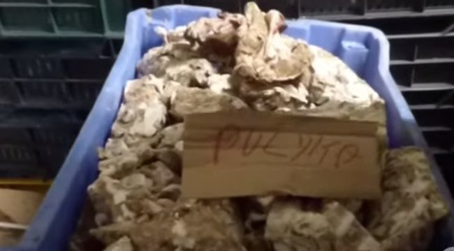 Horror: innen került a hús az asztalra – brutális dolgokat talált a NÉBIH egy üzemben – videó