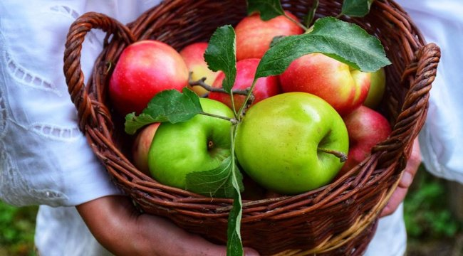 Ezért egyél minden nap egy almát! (x)